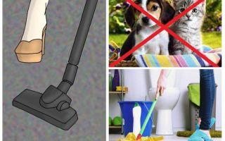 Πώς να ετοιμάσετε ένα διαμέρισμα για την απολύμανση των κατοικίδιων ζώων