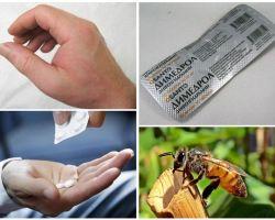 Τι να κάνετε αν μια μελισσική κομμάτι