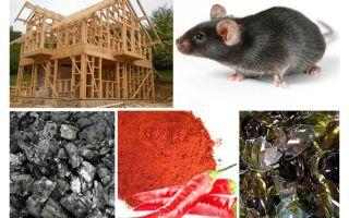 Προστασία της κατοικίας πλαισίου από ποντίκια