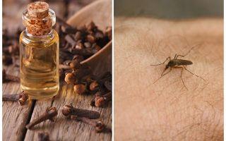 Γαρύφαλλο λάδι ενάντια στα κουνούπια