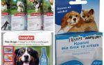 Αντιμετώπιση των ψύλλων και τσιμπουριών για σκύλους