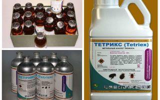 Tetrix θεραπεία για bedbugs