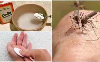 Το διάλυμα κουνουπιών σόδα για παιδιά και ενήλικες