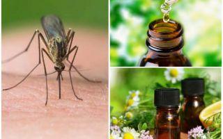 Αιθέρια έλαια από τα κουνούπια