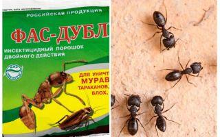 Μέσα Fas-Double από τα μυρμήγκια