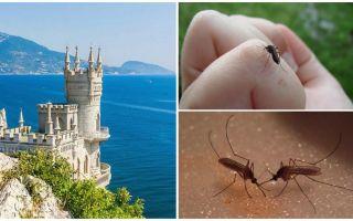 Υπάρχουν κουνούπια στην Κριμαία