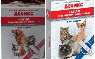 Απολαυστικές σταγόνες ψύλλων για γάτες και σκύλους