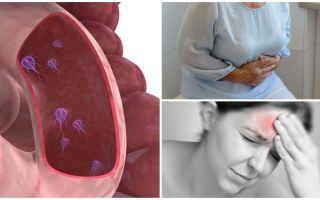 Πώς να προσδιορίσετε την παρουσία Giardia στο ανθρώπινο σώμα