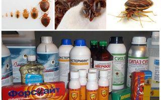 Δηλητήριο για σκασίματα στο σπίτι