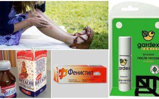 Τι να κάνετε για τα τσιμπήματα κουνουπιών δεν φαγούρα