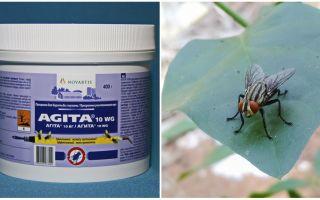 Η χρήση του Agita από τις μύγες