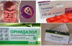 Τα καλύτερα φάρμακα για τη θεραπεία του Giardia σε ενήλικες