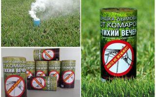 Τα καλύτερα πούλια καπνού για τα κουνούπια