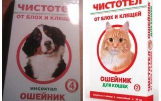 Κολάν για τη γάτα και τα σκυλιά