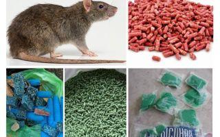 Δηλητήριο αρουραίων