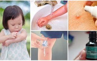 Πώς και τι να θεραπεύει τα κουνουπιέρια σε ένα παιδί