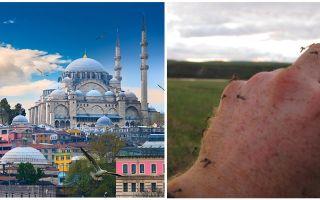 Υπάρχουν κουνούπια στην Τουρκία