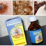 Cucaracha θεραπεία για bedbugs-1