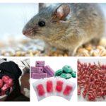 Μορφές δηλητηρίου αρουραίων