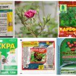Τοξικά χημικά προϊόντα για φυτοπροστασία