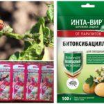 Χημικές ουσίες για την καταστροφή του σκαθαριού της πατάτας του Colorado