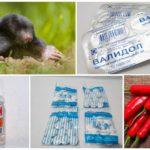 Λαϊκές συνταγές για την καταπολέμηση του mole