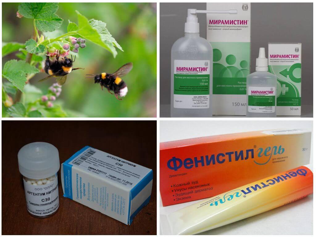 Θεραπεία τσιμπήματος εντόμων