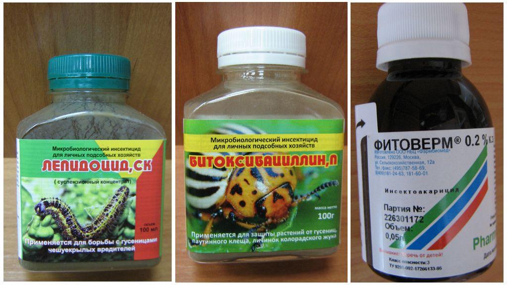 Βιολογικοί παράγοντες κατά των κάμπιων