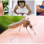Συνέπειες του δαγκώματος των κουναβιών της ελονοσίας